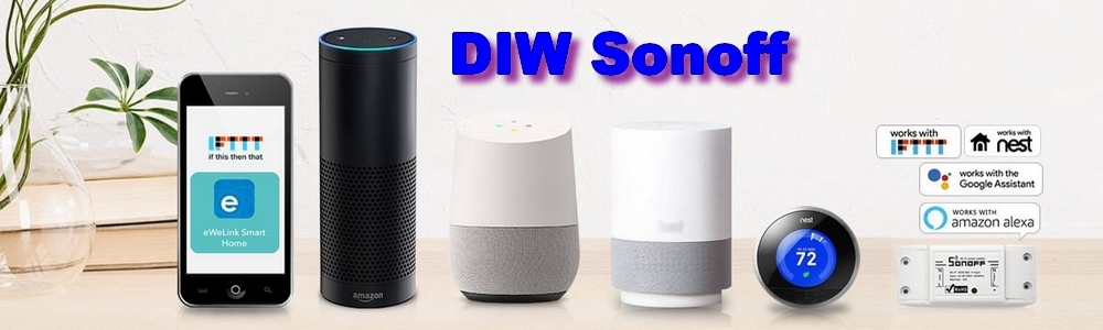 DIW Sonoff works with ALEXA