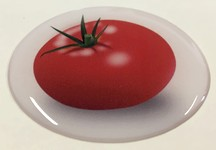 Steckel-Motiv Ver03_Tomate_38